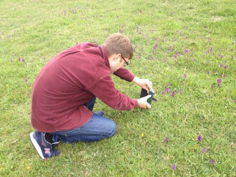 Photographing Green-winged orchids. Photo: Cath Castillo