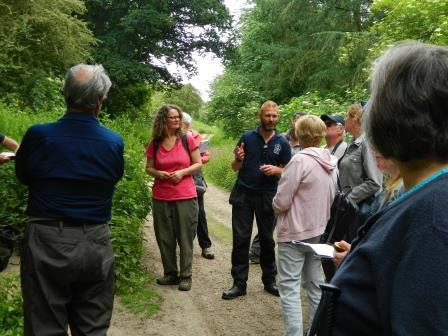 Veteran Tree Course. Photo: Essex Wildlife Trust
