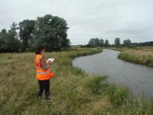 Surveyor on river bank. Photo: Essex Wildlife Trust