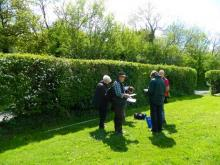 Essex Wildlife Trust hedgerow survey course