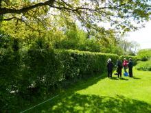 Hedgerow surveyors in training