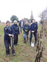 Hedgerow planting, Birch, Essex
